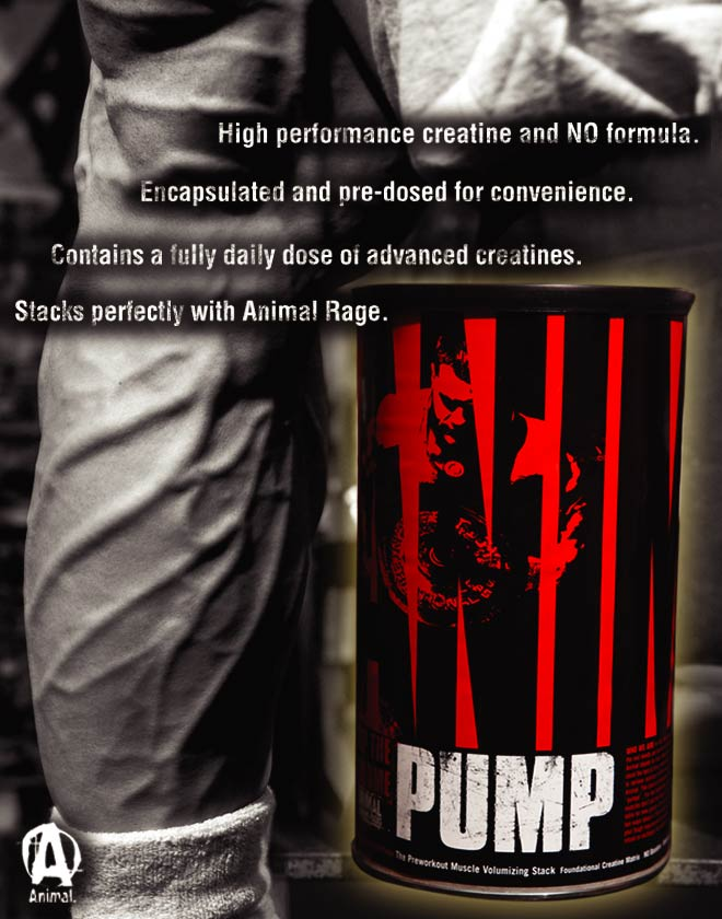 animal-pump-top-bg
